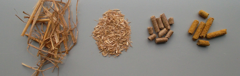 Straw untreated | Straw after treated with a hammer mill | pelleted | pelleted with NaOH (Photo: Fraunhofer IKTS)